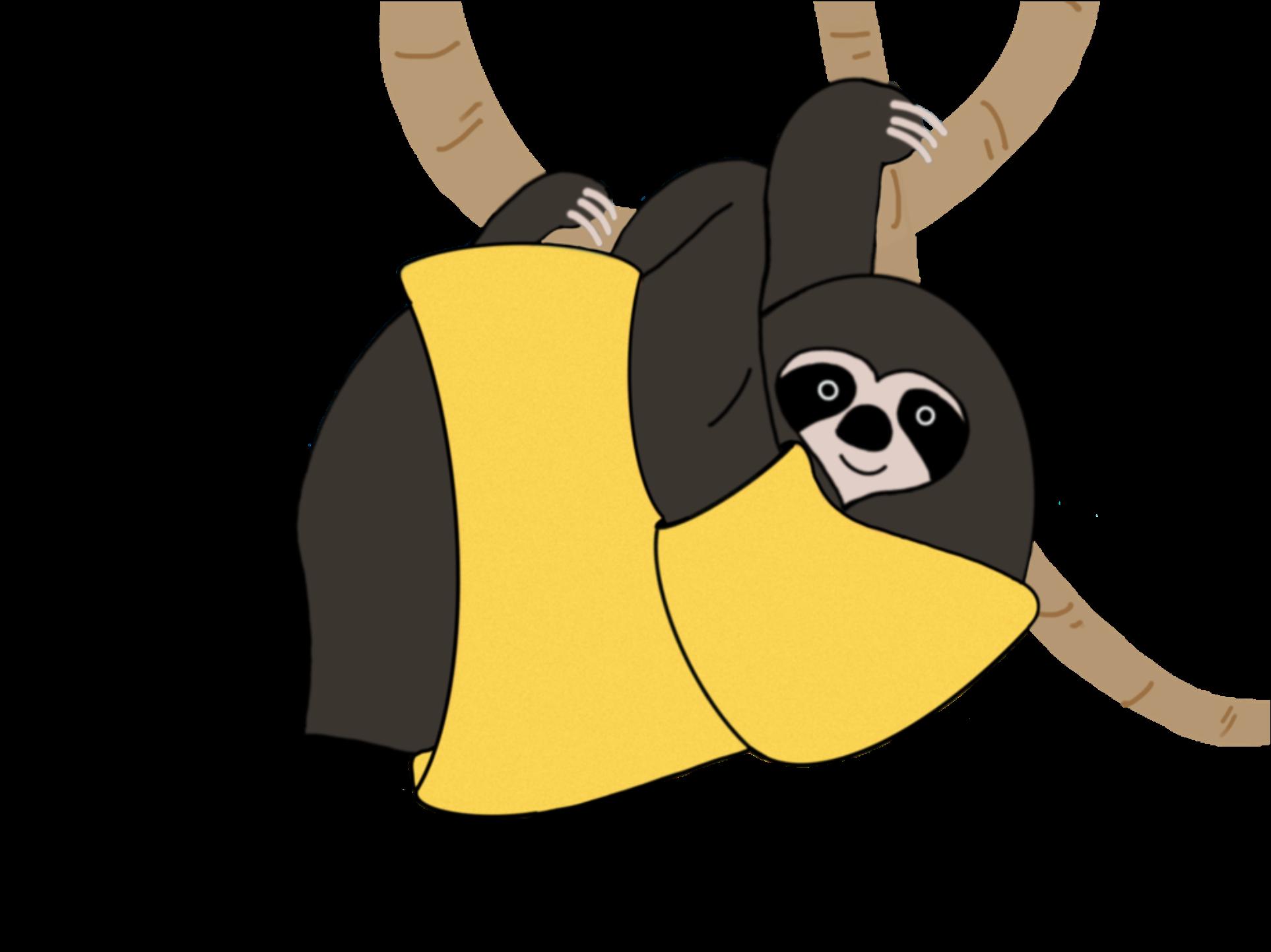 Bicho-preguiça Paçoca / Sloth